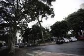 Prefeitura quer transformar o Arouche