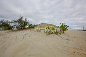 Avanço de dunas no litoral do PI
