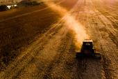 Colheitadeira em plantação de grãos