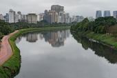 Poluição Rio Pinheiros