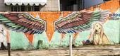Grafites em Recife